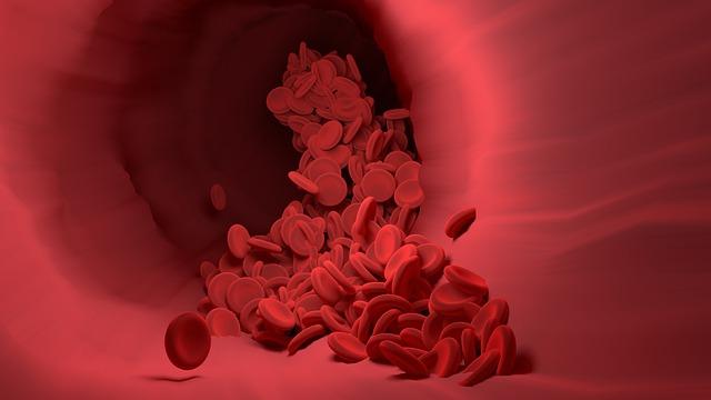 krvne-celice